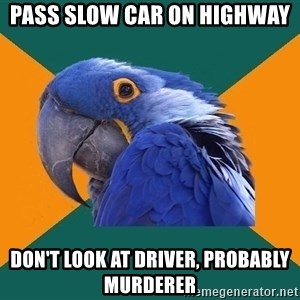 Paranoid Parrot - pass slow car on highway don't look at driver, probably murderer