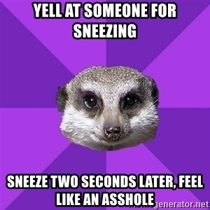 Misophonia Meerkat - yell at someone for sneezing sneeze two seconds later, feel like an asshole