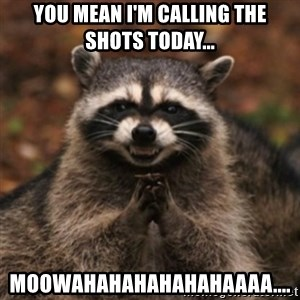 evil raccoon - You mean I'm calling the shots today... Moowahahahahahahaaaa....