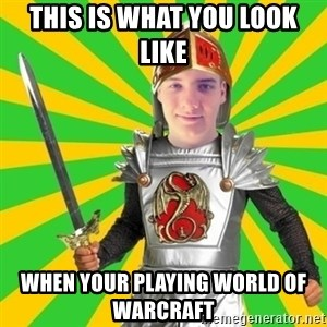 Moraalridder Daniel - This is what you look like  When your playing world of Warcraft