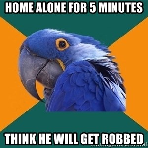 Paranoid Parrot - home alone for 5 minutes  think he will get robbed