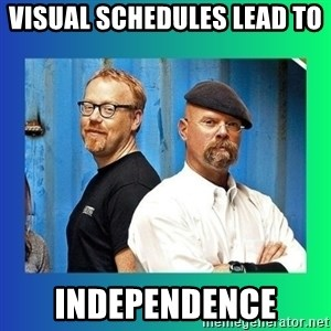 Mythbusters - Visual Schedules Lead To  Independence