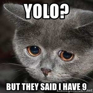 Sadcat - Yolo? But they said I have 9