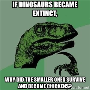 Philosoraptor - If dinosaurs became extinct, Why did the smaller ones survive and become chickens?
