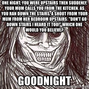 Shadowlurker - One night, you were upstairs then suddenly, your mum calls you from the kitchen. as you ran down the stairs, a shout from your mum from her bedroom upstairs: ''don't go down stairs i heard it too!'' which one would you believe? GOODNIGHT