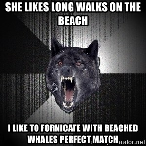 Insanity Wolf - she likes long walks on the beach  i like to fornicate with beached whales PERFECT MATcH