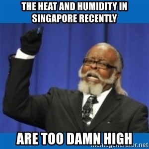 Too damn high - The heat and humidity in singapore recently are too damn high