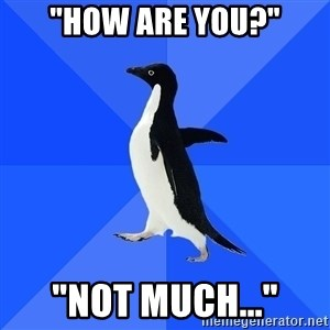"""Socially Awkward Penguin - """"How are you?"""" """"Not much..."""""""