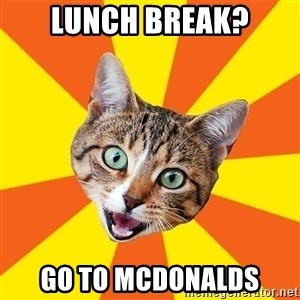 Bad Advice Cat - lunch break? go to mcdonalds