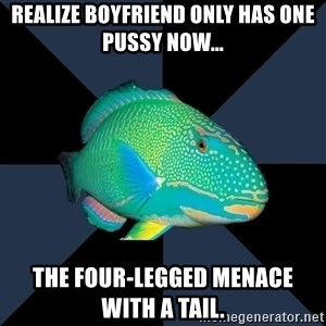 Trans Parrot Fish's Significant Other - Realize boyfriend only has one pussy now... The four-legged MENACE with a tail.