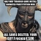 Skyrim Meme Generator - Half way through game install animated prostitution mod All saves deleted, your fucked
