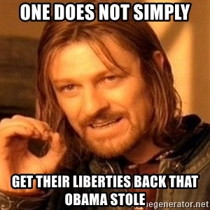 One Does Not Simply - one does not simply get their liberties back that obama stole