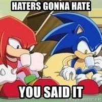 sonic - Haters gonna hate  You said it