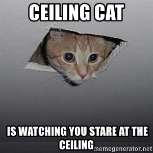 Ceiling cat - Ceiling cat  is watching you Stare at the ceiling