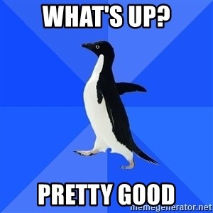 Socially Awkward Penguin - what's up? pretty good