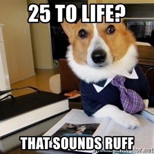 Dog Lawyer - 25 to life? that sounds ruff