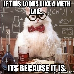 Science Cat - if this looks like a meth lab... its because it is.
