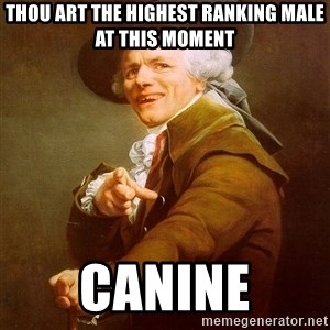 Joseph Ducreux - thou art the highest ranking male at this moment canine