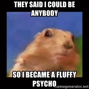 Dafuq? Chipmonk - They said I could be anybody So I became a fluffy psycho
