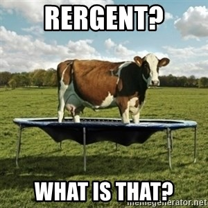 Unimpressionable Cow - Rergent? what is that?