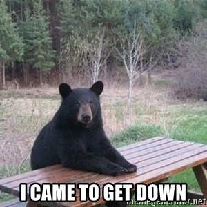 Patient Bear - I came to get down