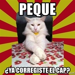 Dictator Cat - peque ¿ya corregiste el cap?