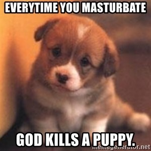 cute puppy - EVERYTIME YOU MASTURBATE GOD KILLS A PUPPY.