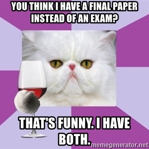 Art History Major Cat - You think i have a final paper instead of an exam? that's funny. I have both.