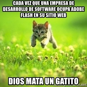 God Kills A Kitten - Cada vez que una empresa de desarrollo de software ocupa Adobe Flash en su sitio web Dios mata un gatito