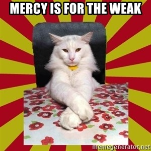 Dictator Cat - mercy is for the weak