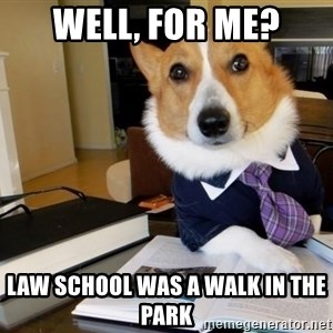 Dog Lawyer - well, for me? law school was a walk in the park