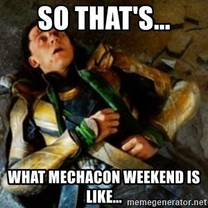 loki down - So that's... what mechacon weekend is like...