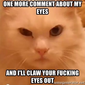 GipCat - one more comment about my eyes and i'll claw your fucking eyes out