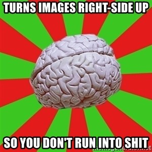 Good Guy Brain - turns images right-side up so you don't run into shit