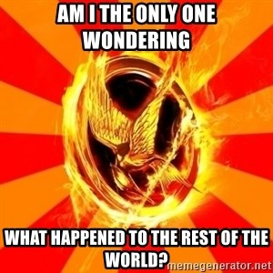 Typical fan of the hunger games - Am i the only one wondering what happened to the rest of the world?