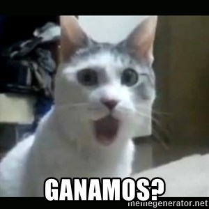 Surprised Cat - GANAMOS?