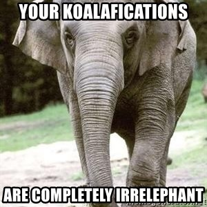 Eating Disordered Elephant  - Your Koalafications Are completely irrelephant