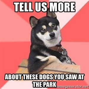 Cool Dog - tell us more  about these dogs you saw at the park