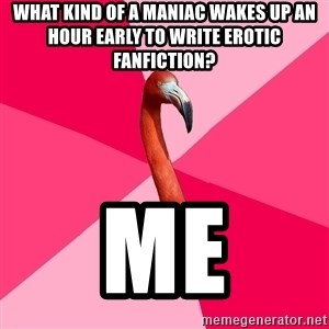 Fanfic Flamingo - What kind of a maniac wakes up an hour early to write erotic fanfiction? Me