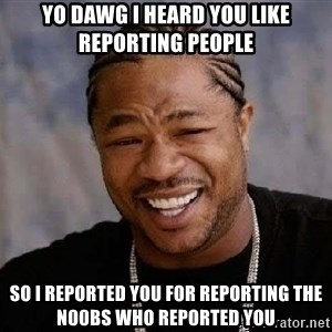Yo Dawg - Yo dawg I heard you like reporting people so i reported you for reporting the n00bs who reported you