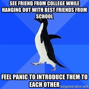 Socially Awkward Penguin - SEE FRIEND FROM COLLEGE WHILE HANGING OUT WITH BEST FRIENDS FROM SCHOOL FEEL PANIC TO INTRODUCE THEM TO EACH OTHER