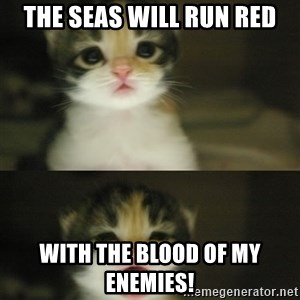 Adorable Kitten - The seas will run red with the blood of my enemies!