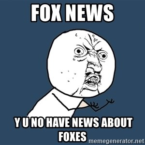 Y U No - fox news  y u no have news about foxes