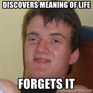 Really Stoned Guy - DISCOVERS MEANING OF LIFE FORGETS IT