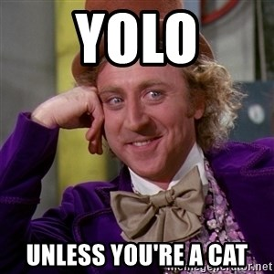 Willy Wonka - yolo unless you're a cat