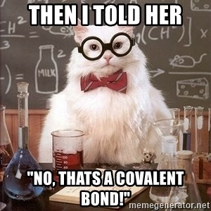 "Chemistry Cat - then i told her ""no, thats a covalent bond!"""