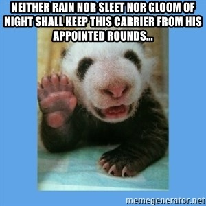 Baby Panda - Neither rain nor sleet nor gloom of night shall keep this carrier from his  appointed rounds...