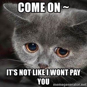 Sadcat - come on ~ it's not like i wont pay you