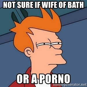 Futurama Fry - Not sure if wife of bath Or a porno