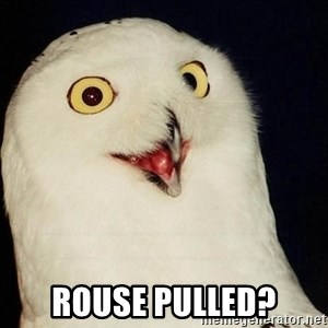 O Rly Owl - Rouse pulled?